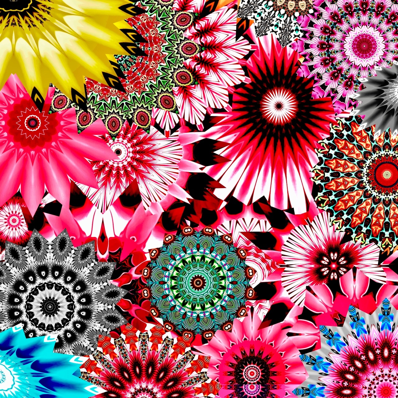 BLOOMING SOUL<br>Digital Art Print Under Acrylic Glass<br>Print Size : 15'' x 15''