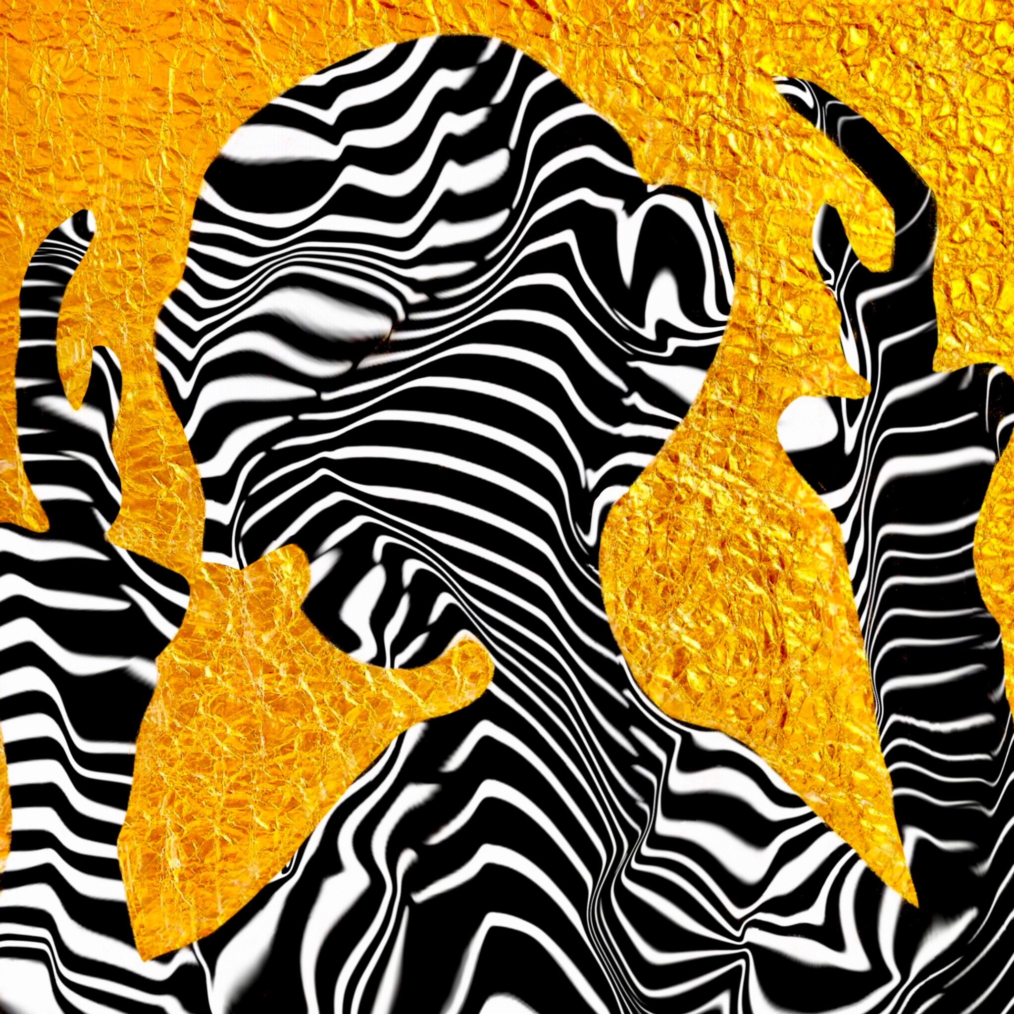 CODE NAME : ZEBRA<br>Digital Art Print Under Glass